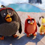 3D映画『アングリーバード』10月1日(土)全国ロードショー!日本版30秒予告映像解禁!