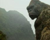 『キングコング:髑髏島の巨神』スカル・クローラーが初めて姿を現す瞬間をとらえた本編映像が解禁!