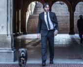 『ジョン・ウィック:パラベラム』祝・愛犬の日、感動の特別映像が到着!